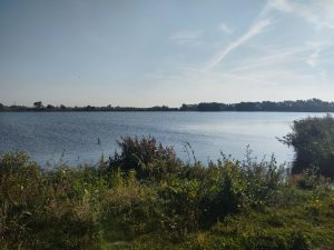 Koolhofput in Nieuwpoort